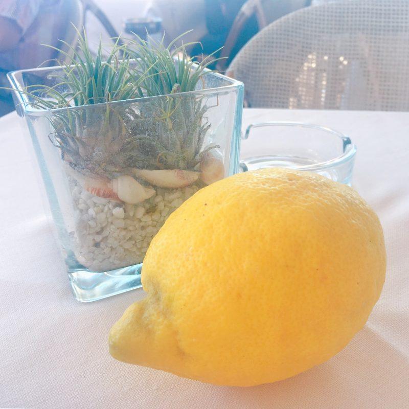 カプリ島の海が見えるレストランでランチ