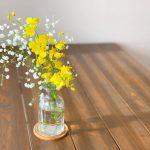 オンシジューム*心の癒しと元気を与えてくれるお花を飾る習慣