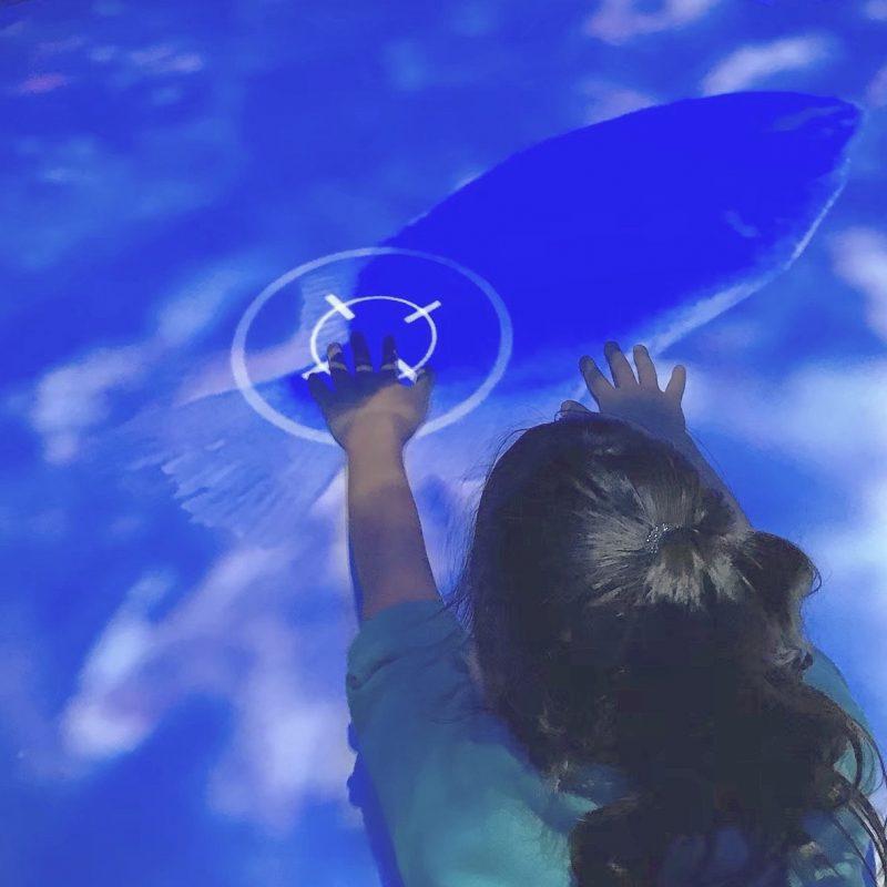 ニフレル*いろにふれる子供がデジタルの魚をタッチして遊ぶ