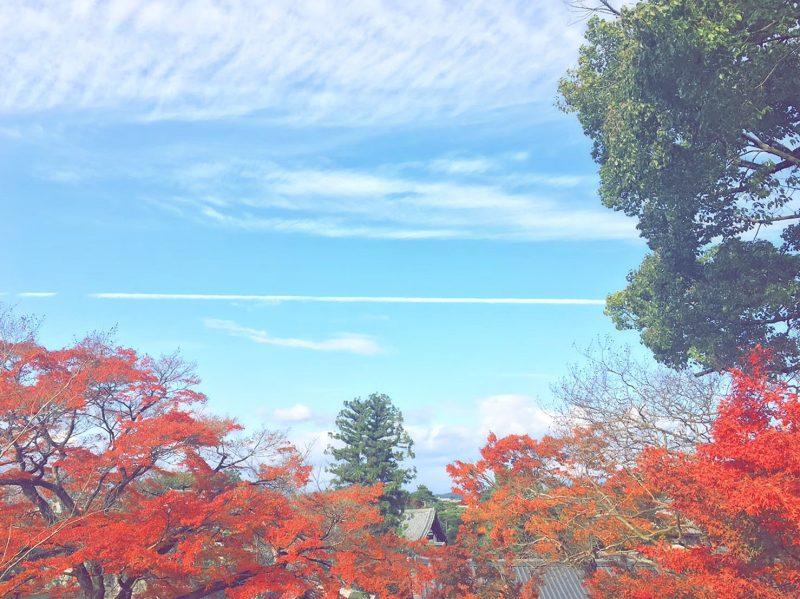10円玉で有名な世界遺産平等院鳳凰堂