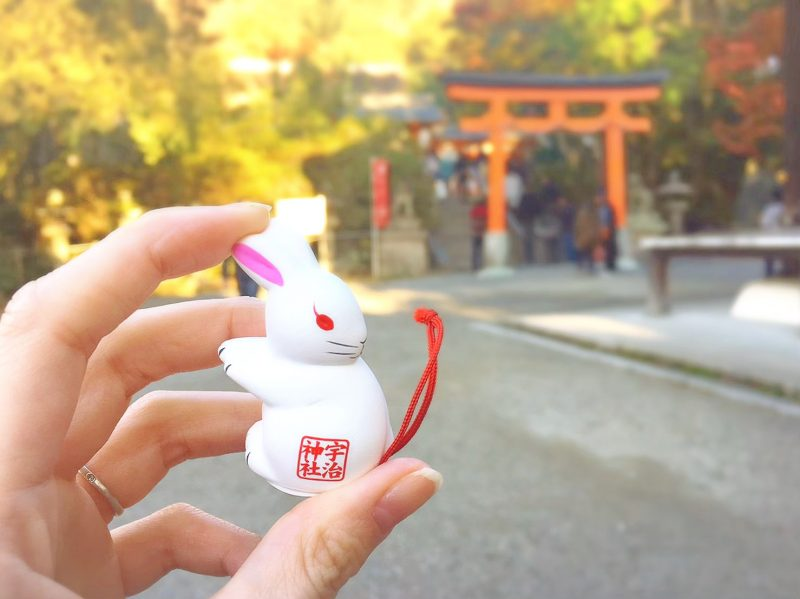 うさぎのおみくじがかわいい♡京都の宇治神社