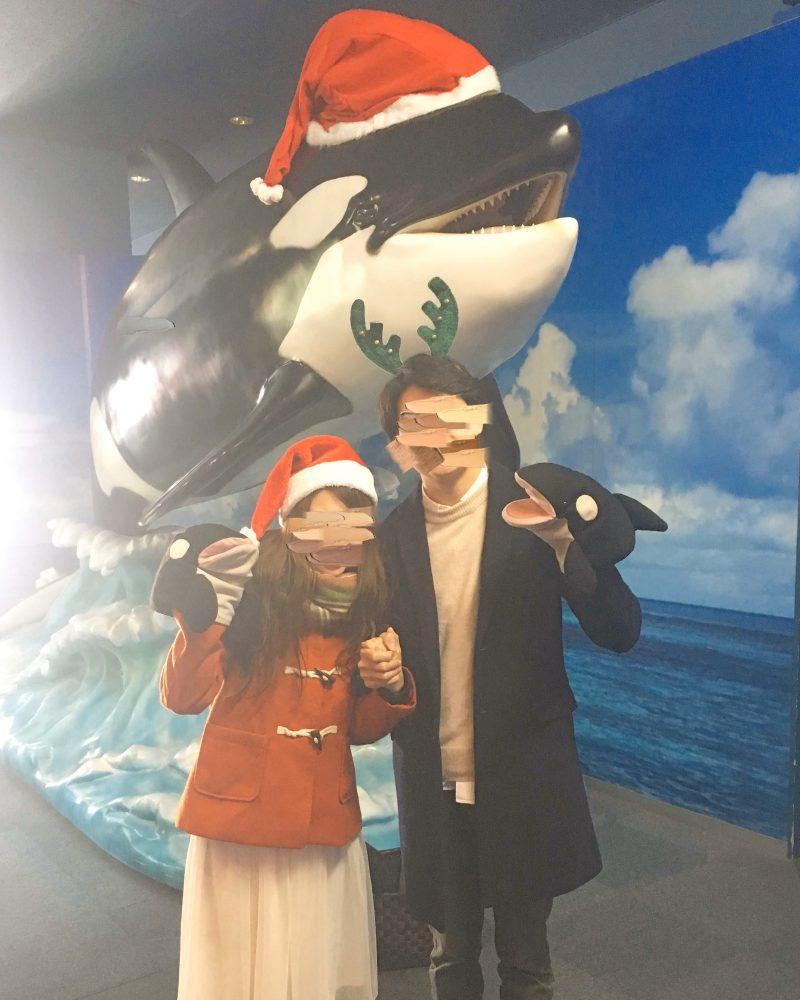 日本最大級の名古屋港水族館♡見るべき②イルカのパフォーマンス