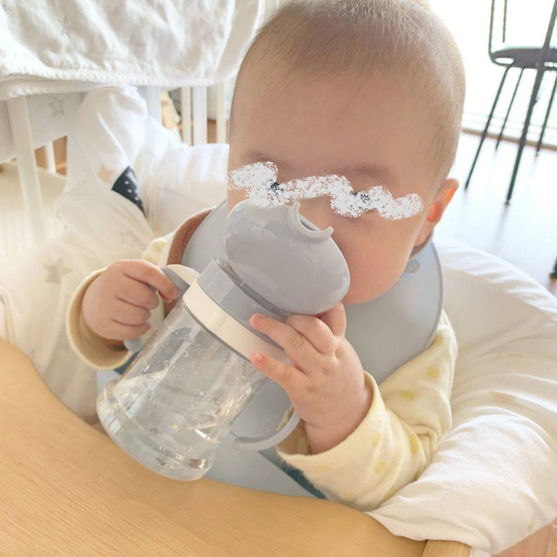 息子の成長記録(0歳6ヶ月~0歳7か月)