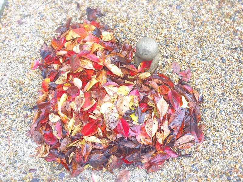 正寿院のハートの落ち葉とお地蔵さん